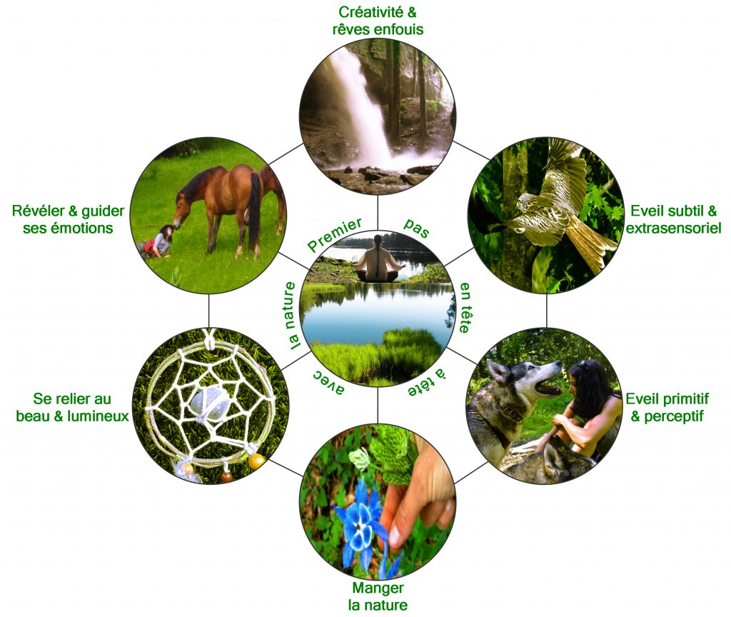 SENSITIVE NATURE: Nos ateliers