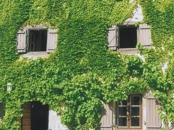 image-9550952-IMMO-LIBERTY-COM-Privatverkauf-Haus-Lavignac-Nouvelle-Aquitaine-Frankreich-00547310F-06.jpg
