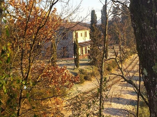image-9551348-IMMO-LIBERTY-COM-Privatverkauf-Landhaus-Casino-Di-Terra-Toskana-Italien-00547090I-02.jpg
