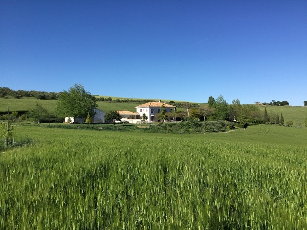 image-9600971-IMMO-LIBERTY-CH-Privatverkauf-Finca-Ronda-Andalusien-Spanien-00548140E-01.jpg