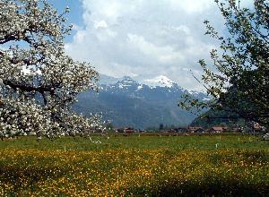 Blick Richtung Meiringen-Hasliberg