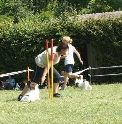 Stafette Small - Übergabe Agi zu Jumping